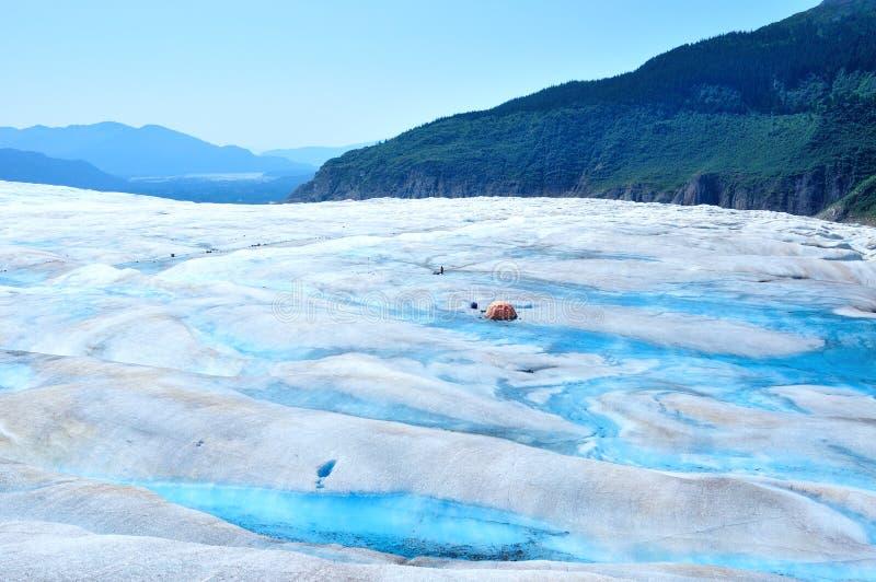 Campa i den Mendenhall glaciären i Juneau Alaska arkivfoton