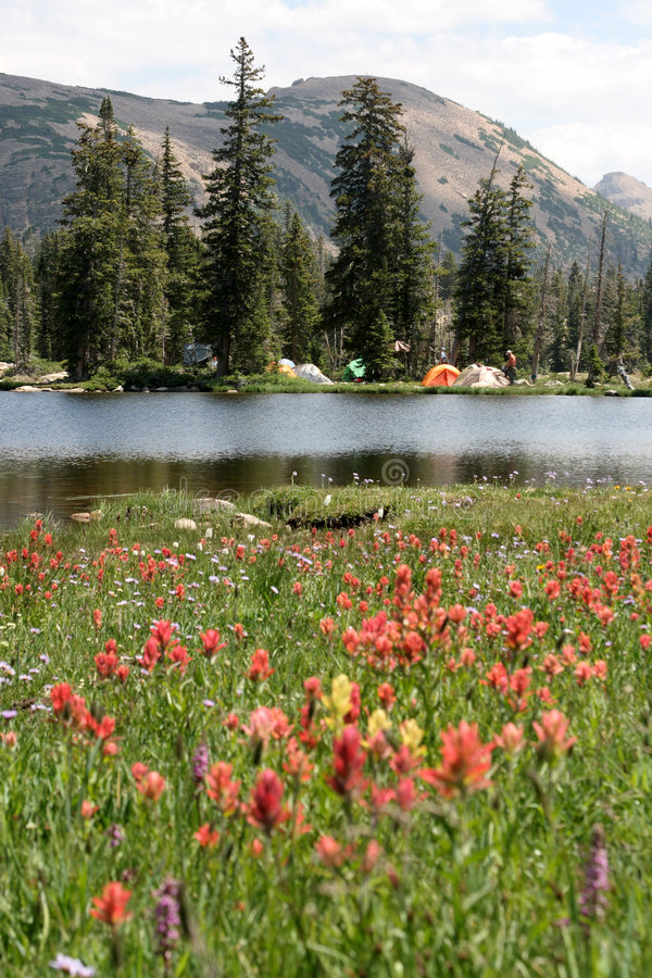 campa lake bredvid arkivfoto
