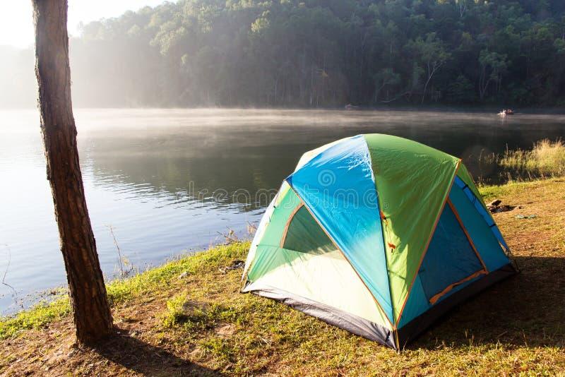 Campa på Pang Tong Under Royal Forest Park arkivbilder