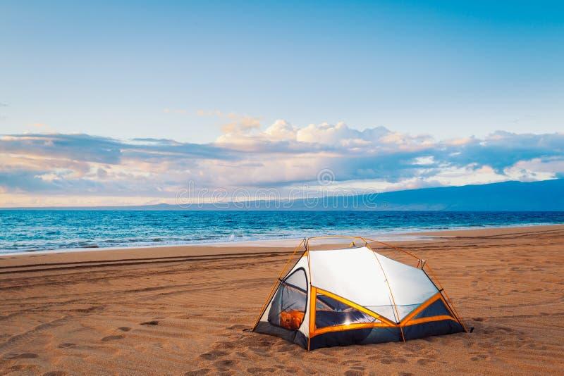 Campa på stranden royaltyfria bilder