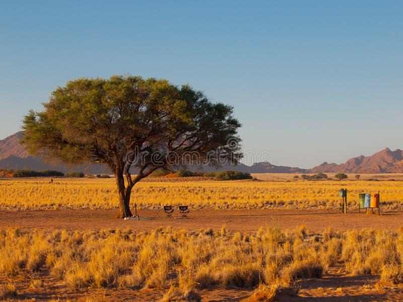 Campa plats i afrikansk vildmark royaltyfria foton
