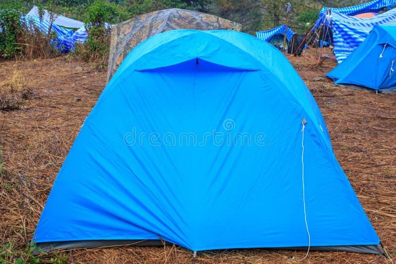 Campa tält på det torra gräset nära berget i morgonen fotografering för bildbyråer