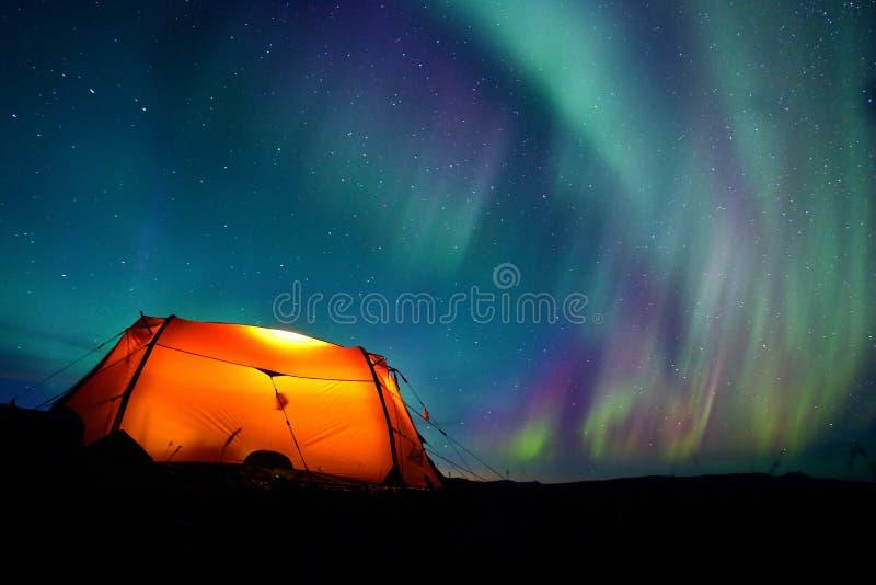 Campa under nordliga lampor fotografering för bildbyråer