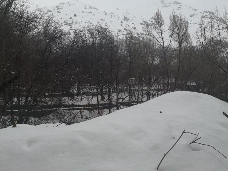 Campagna di caduta della neve di inverno immagine stock libera da diritti