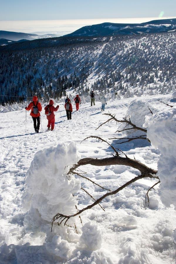 Campagna di inverno di Snowy, supporto di Snezka - hora di Ruzova, Krkonose fotografia stock libera da diritti