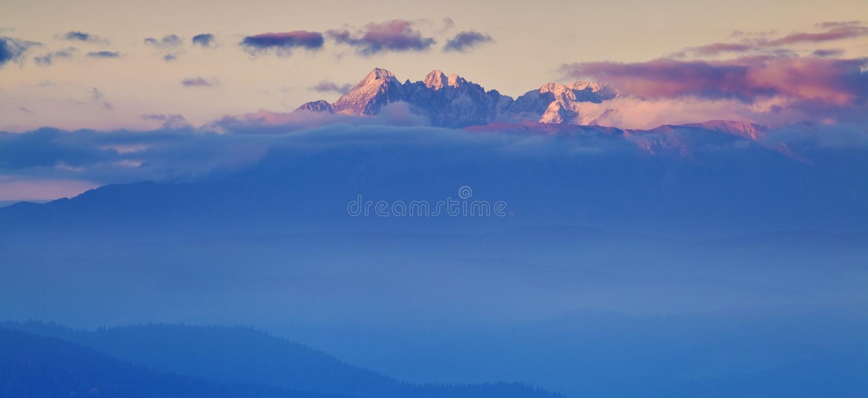 Campagna di rotolamento luminosa alla luce uguagliante Giorno pittoresco e scena splendida nel tempo di primavera Montagne carpat fotografia stock libera da diritti