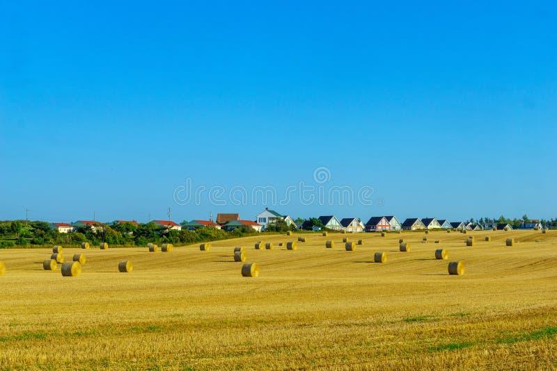 Campagna e mucchi di fieno vicino a Cavendish, PEI fotografie stock libere da diritti