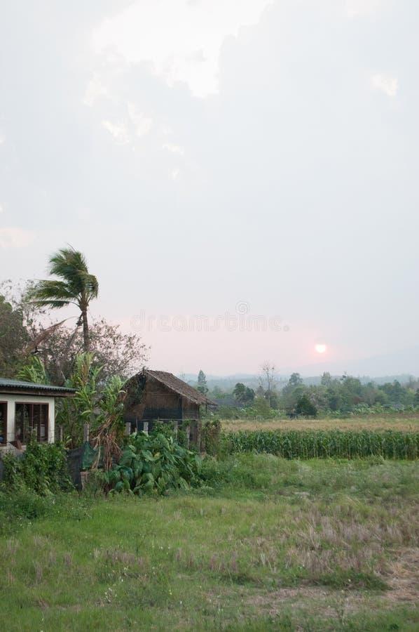 Campagna in Tailandia, Asia immagini stock libere da diritti