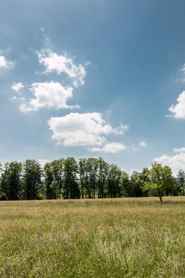 Campagne allemande avec des forêts, des champs et des prés image stock