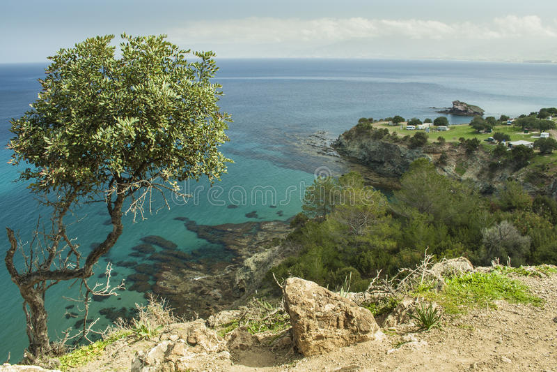Campagne côtière scénique à la péninsule d'Akamas de la Chypre image libre de droits