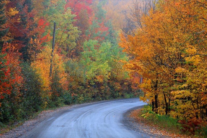 Campagne du Québec dans le temps d'automne photo libre de droits