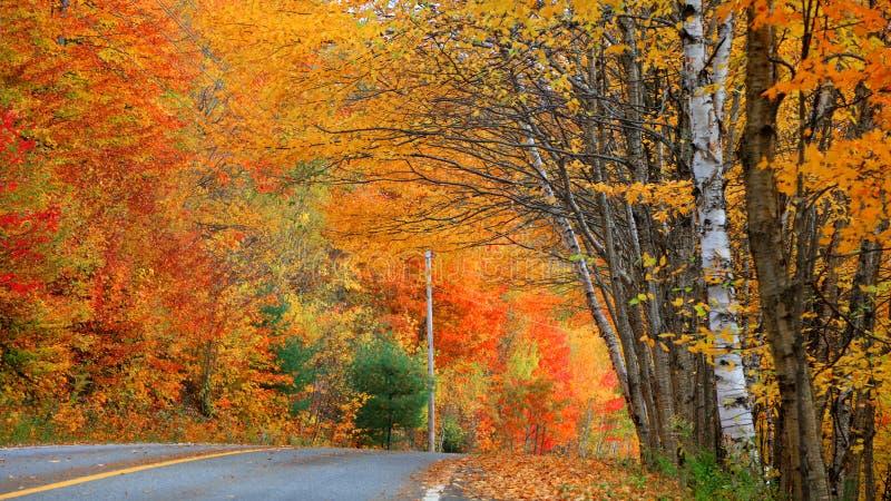 Campagne du Québec dans le temps d'automne photos libres de droits
