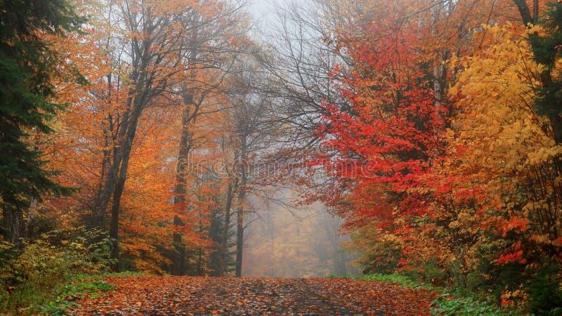 Campagne du Québec dans le temps d'automne image stock