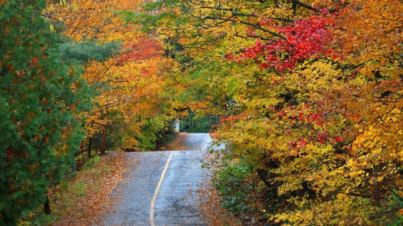 Campagne du Québec dans le temps d'automne photographie stock