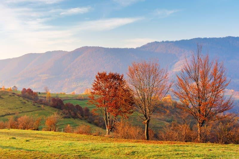 Campagne en montagnes au lever de soleil photo libre de droits