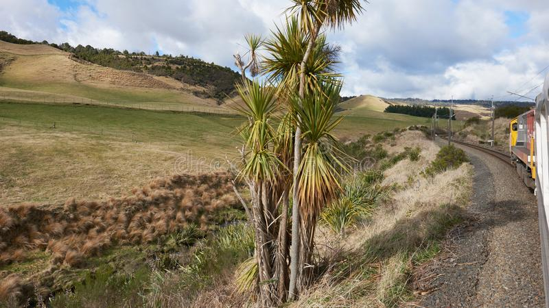 Campagne idyllique au Nouvelle-Zélande images libres de droits