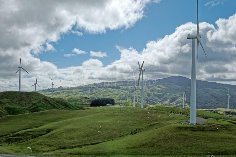 Campagne idyllique au Nouvelle-Zélande photos stock