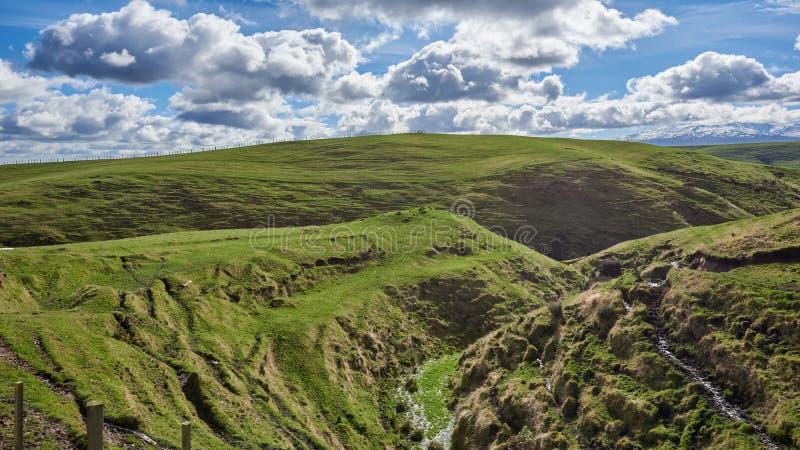 Campagne idyllique de Rolling Hills et de vallées au Nouvelle-Zélande images stock