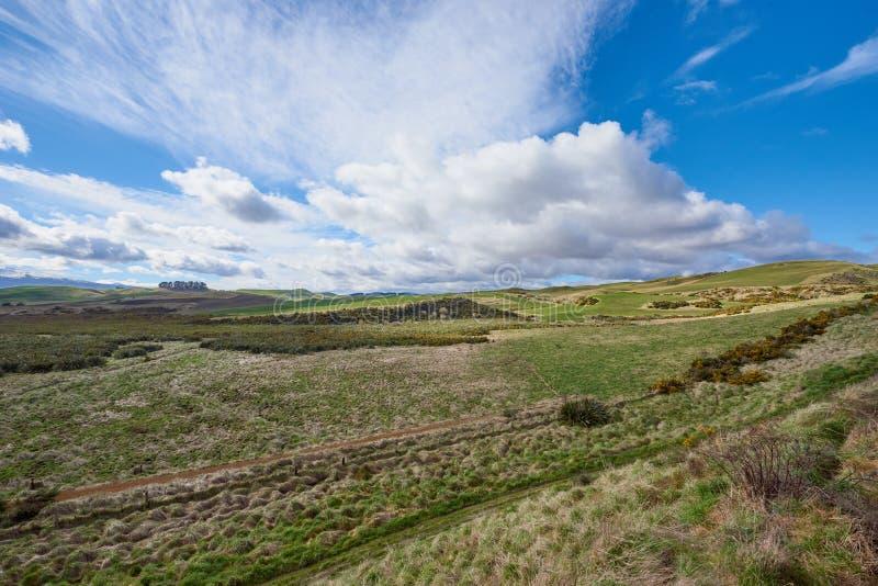 Campagne idyllique de Rolling Hills et de vallées au Nouvelle-Zélande photo stock