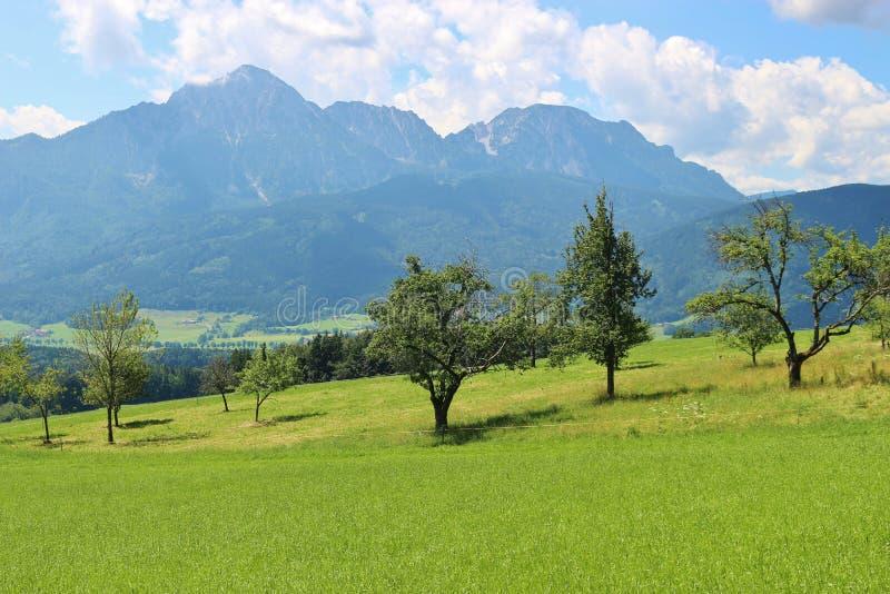 Download Campagne Idyllique En Bavière, Allemagne Photo stock - Image du allemagne, bavaria: 76086700
