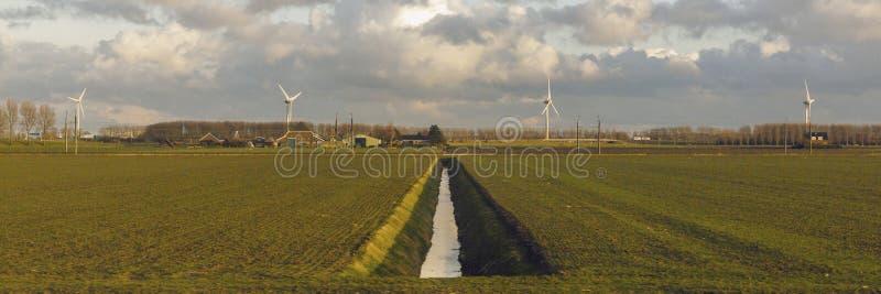 Campagne néerlandaise avec des turbines de vent photographie stock libre de droits
