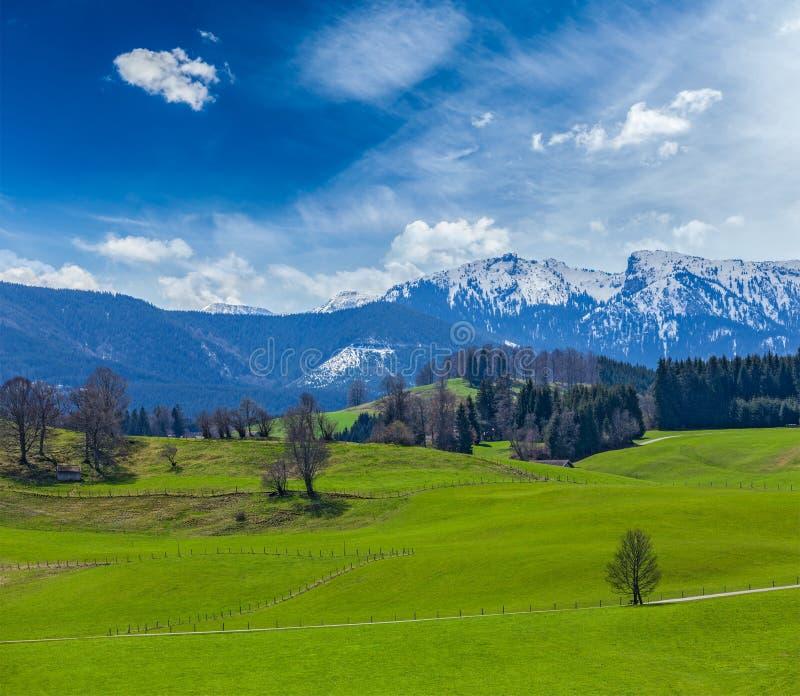 Campagne pastorale idyllique allemande au printemps avec des Alpes dans le backg photographie stock libre de droits