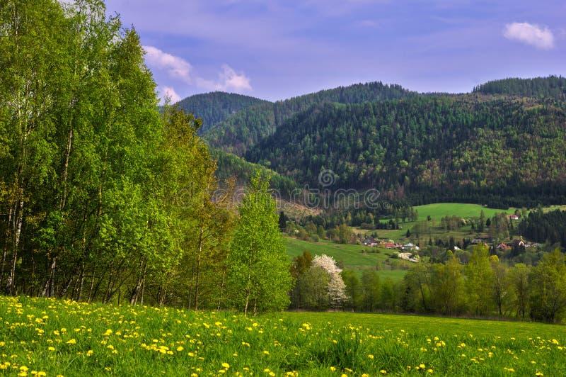 Campagne près de village de Valkovna photographie stock libre de droits