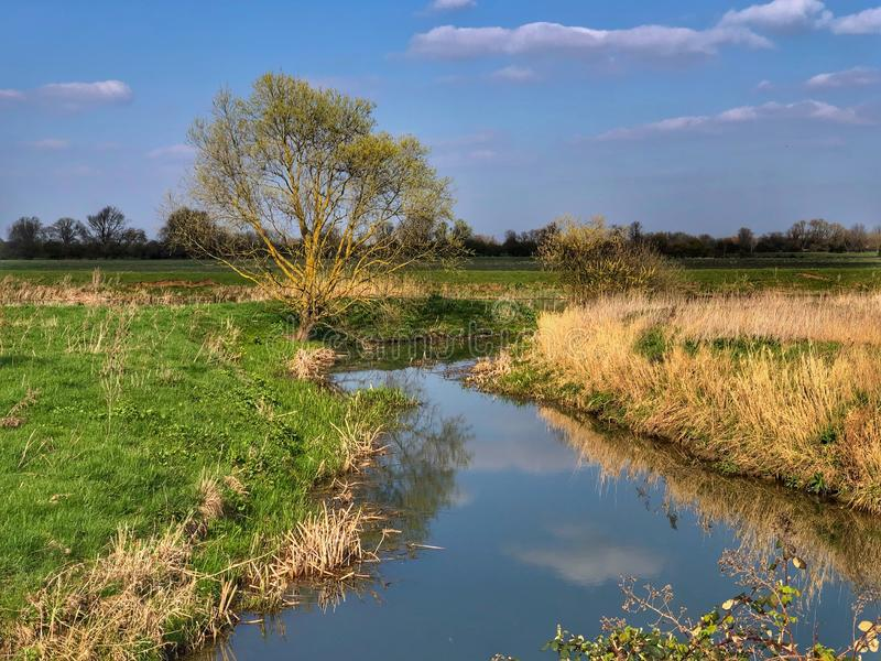 Campagne rurale au printemps image libre de droits