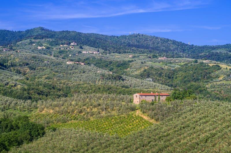 Campagne toscane avec des vignobles, des oliviers, des bois, des fermes et la ville images libres de droits