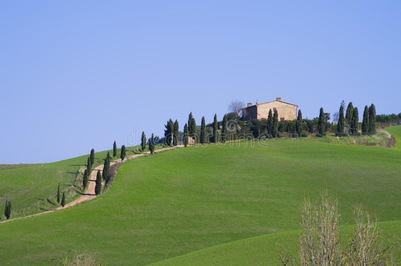 Campagne toscane avec la ferme et les rangées des arbres sous la SK bleue photos libres de droits