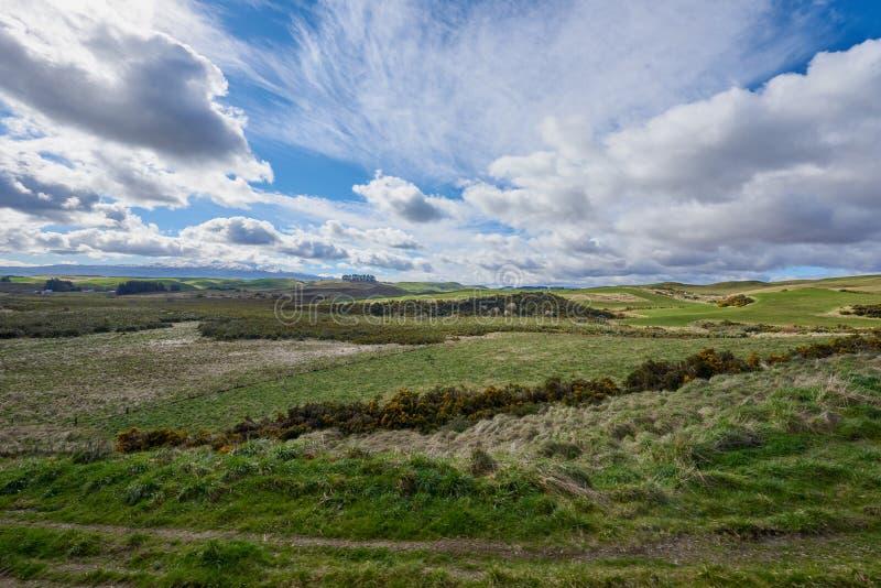 Campagne verte idyllique de roulement au Nouvelle-Zélande photos stock