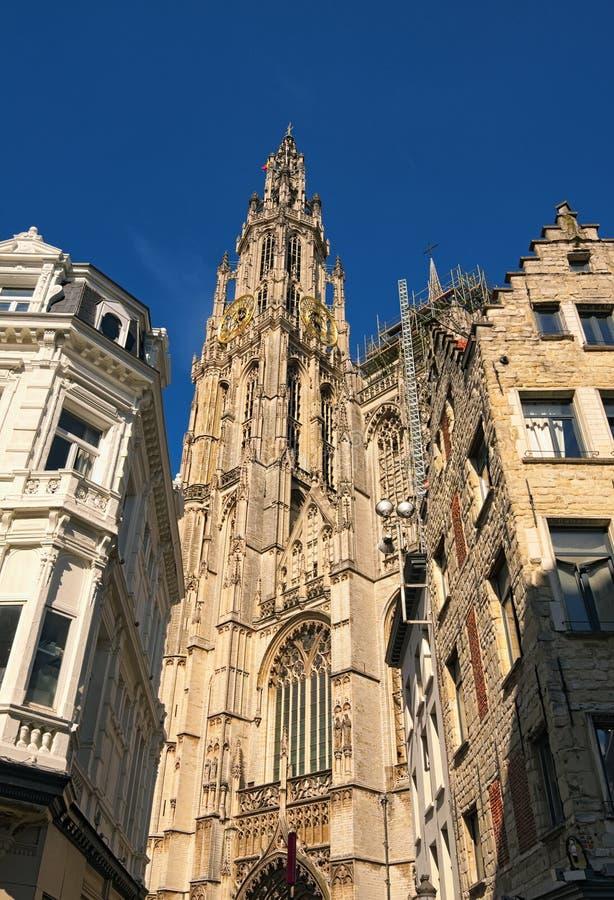 Campanile con l'orologio dorato della cattedrale della nostra signora immagini stock