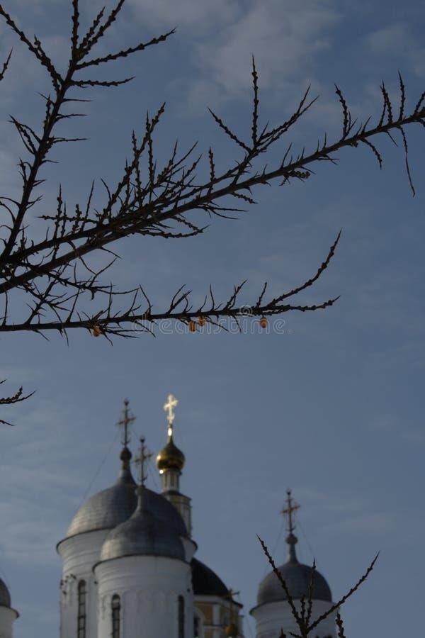 Campanili della chiesa ed albero dell'olivello spinoso immagini stock
