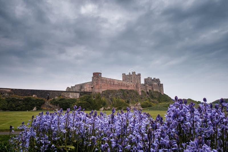 Campanillas y castillo de Bamburgh en Northumberland Inglaterra fotografía de archivo libre de regalías