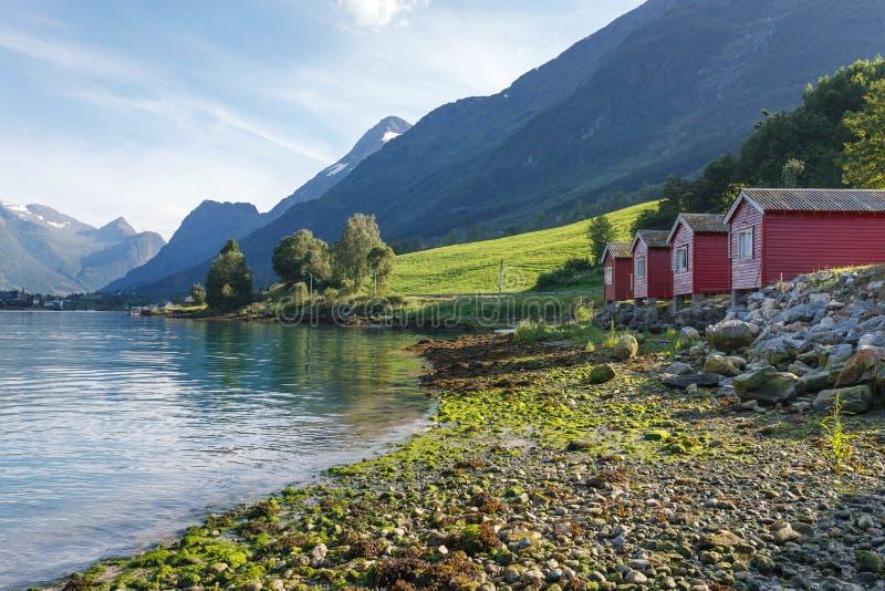 Campant sur le rivage de Nordfjord, la Norvège photographie stock