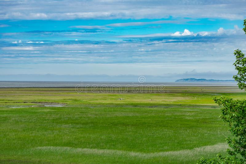 Campbell Creek Estuary im Anchorage, Alaska stockfotografie