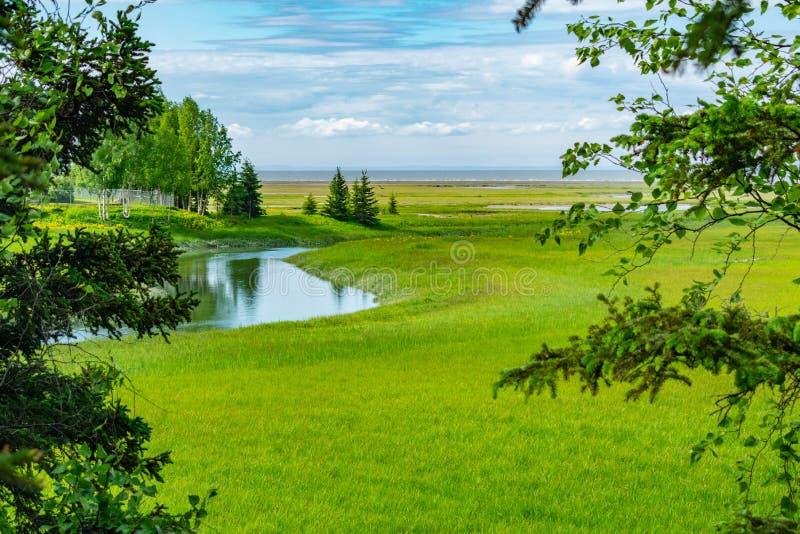 Campbell Creek Estuary im Anchorage, Alaska lizenzfreie stockfotos