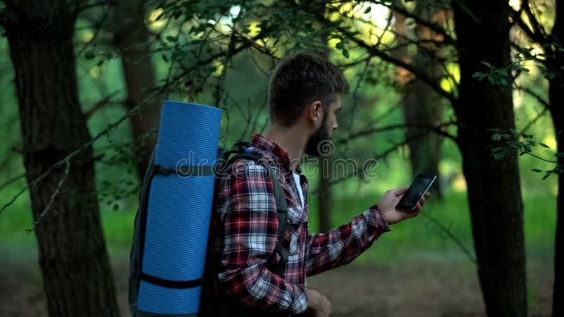 Campeggiatore che cerca il segnale del telefono cellulare dopo perso in legno, connessione scadente fotografie stock