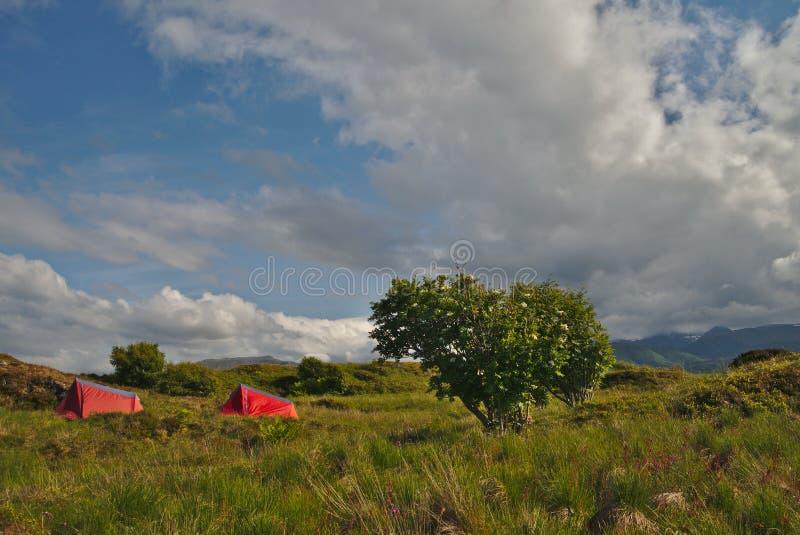 Campeggio selvaggio nel paesaggio scenico della Norvegia immagine stock
