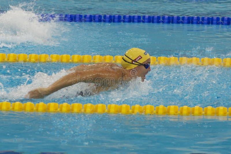 Campeonato 2012 de la taza de mundo de la natación de Dubai Fina imágenes de archivo libres de regalías