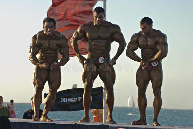 Campeonato 6 5 del Bodybuilding de DUBAI de la ZAMBULLIDA del CIELO fotografía de archivo libre de regalías