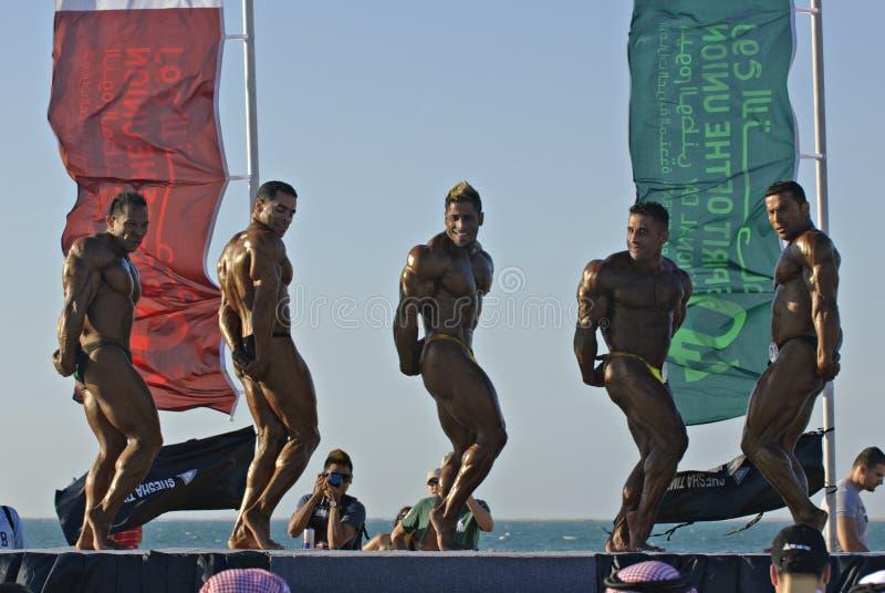 Campeonato 7 do Bodybuilding de DUBAI do MERGULHO do CÉU fotos de stock royalty free