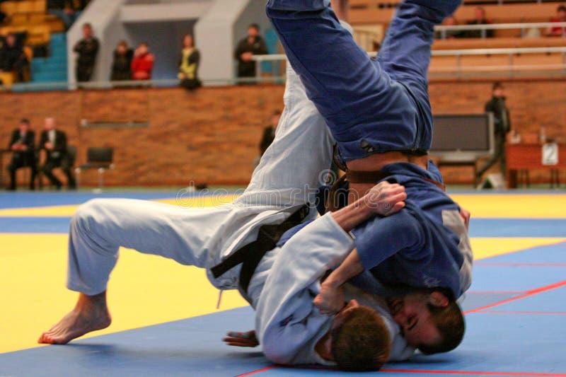 Campeonato del judo fotografía de archivo libre de regalías