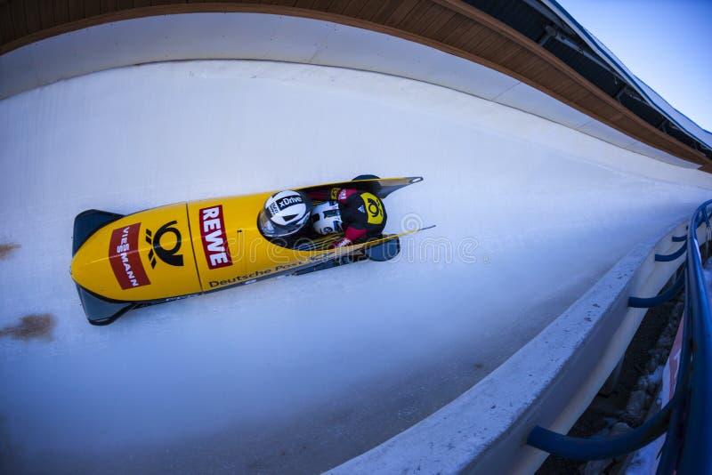 Campeonato do mundo Calgary Canadá 2014 do trenó imagens de stock royalty free