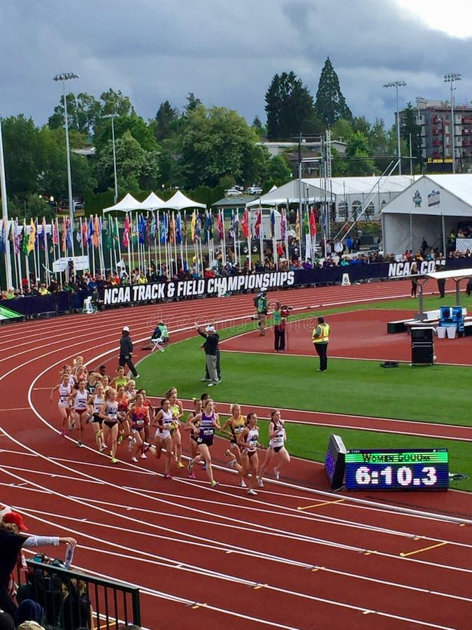 Campeonatos del atletismo del NCAA imagen de archivo