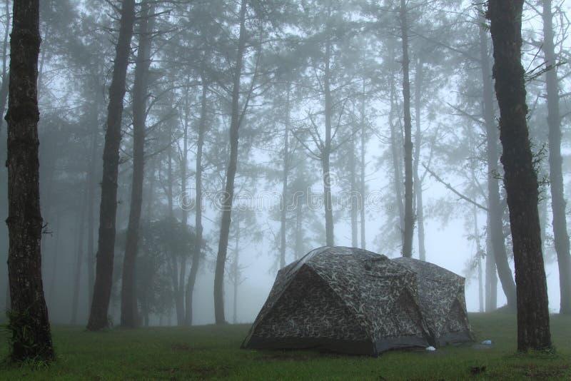 Camper photos libres de droits
