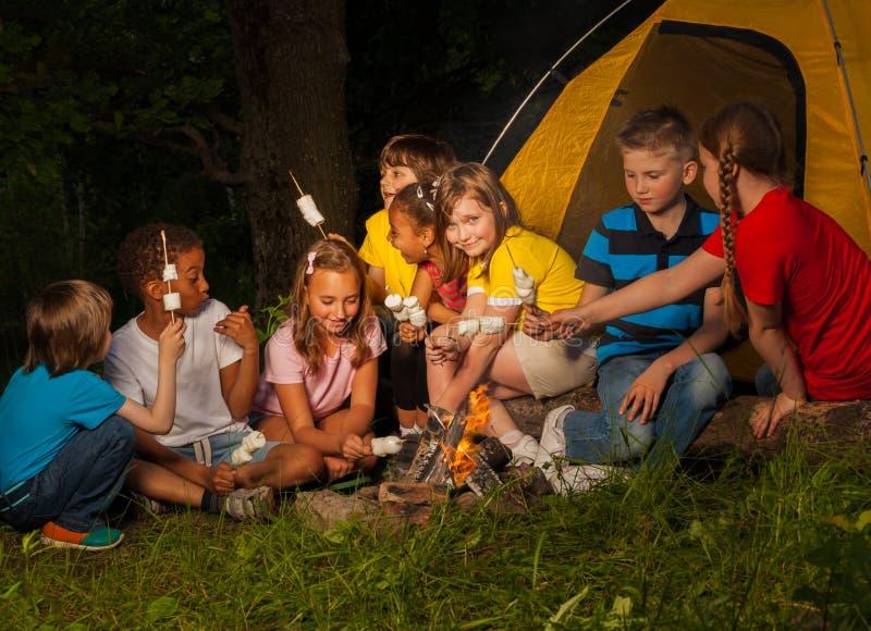 Camper, die mit Eibisch nahe Feuer sitzen lizenzfreie stockfotos