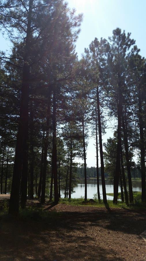 Camper par le lac photographie stock libre de droits