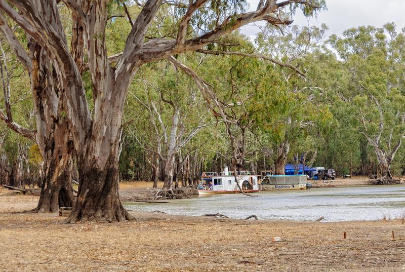 Camper - parc national de Barmah photos stock