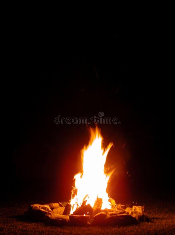 Campfire. In a dark night